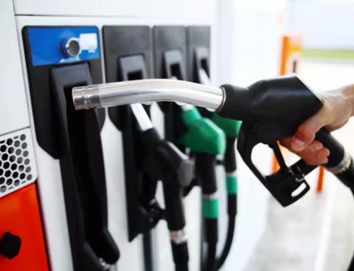 Кампания 2020 за газьола е отворена